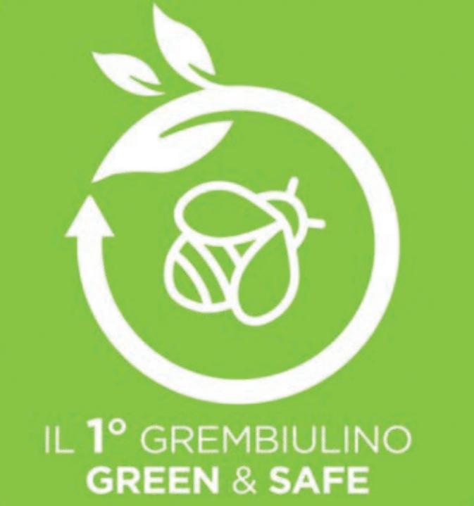 siggi_1_grembiule_green
